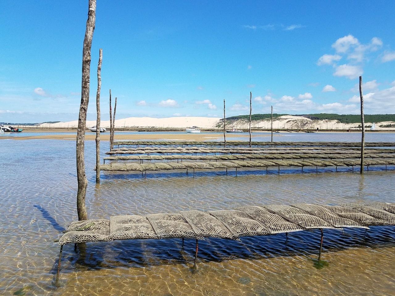 immobilier bassin arcachon